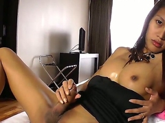 Meet naughty and seductive shemale Candise! She adores everything related to dirty action and this time doesnt mind stroking her erected dick in front of the camera lens.