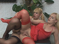 Heated ladyboy going for arse drilling exercises with her transsexual neighbour