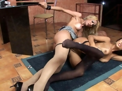 Hot shemals getting kicks from doggystyle fucking with soft pantyhose on