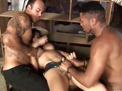 Rough Sex Tranny Banged